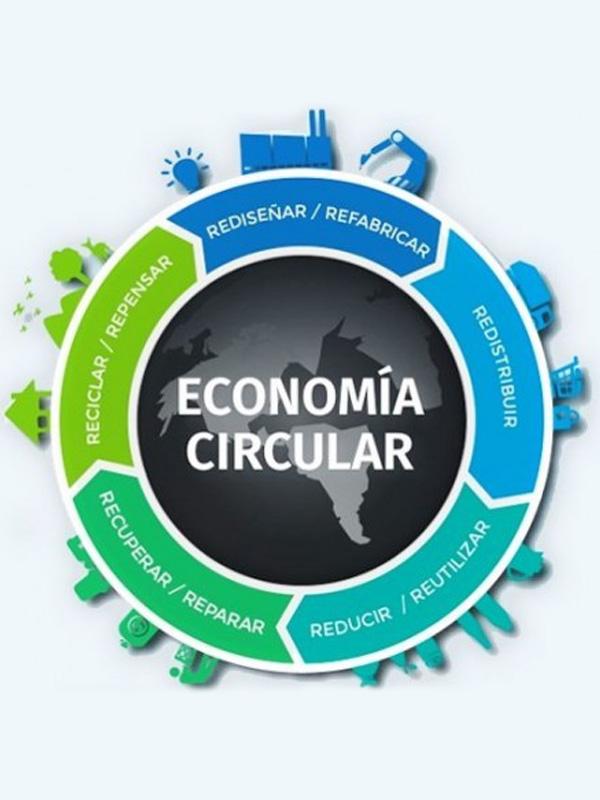 ecocircular-reciclaje-y-vida