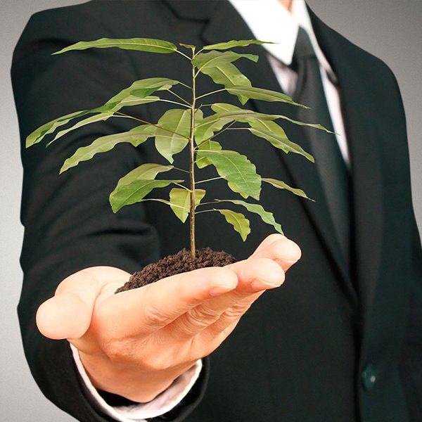 consultor-en-gestion-ambiental-ecocircular